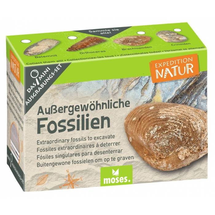Flash TRIBE SPIDERMAN 8GB